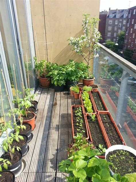 Gardening On A Balcony Small Balcony Garden Ideas And Tips Houz Buzz