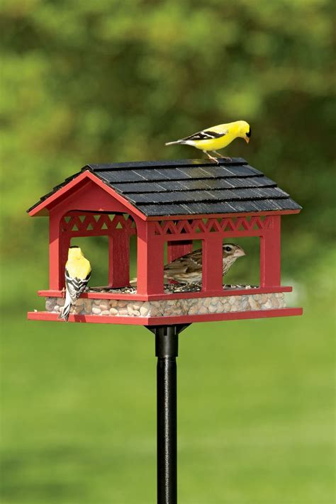 7 Pretty Bird Feeders by 25 Best Ideas About Platform Bird Feeder On