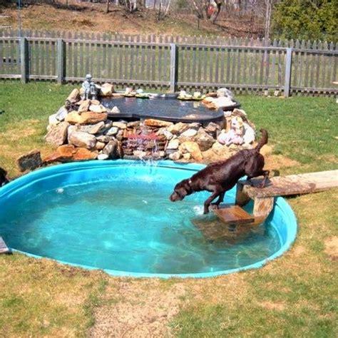 backyard run ideas 25 best ideas about outdoor kennels on