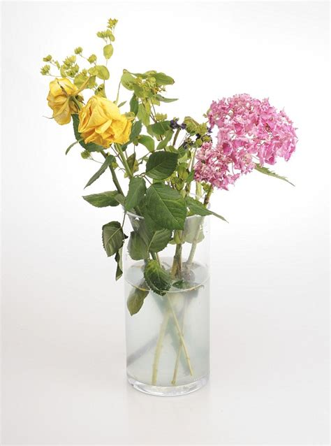 Aspirin In Flower Vases by Keep Flowers Fresh By Treating Them To Vodka