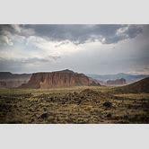 desert-ecosystem-pictures