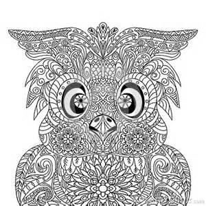 owl portrait mandala zentangle stock abbildung bild 59915739