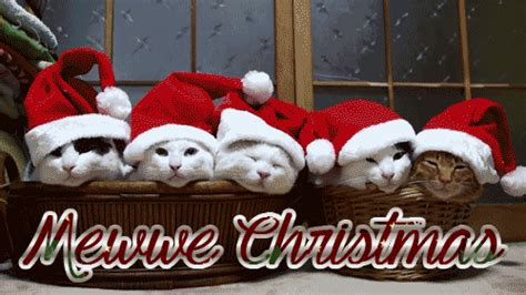 great santa claus animated christmas wishes gif images  share