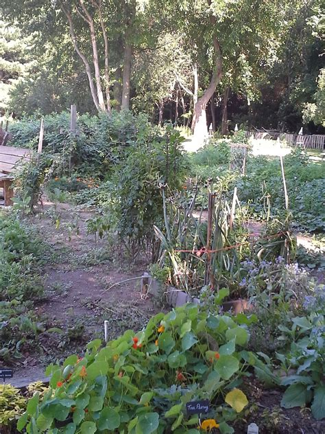 Garden Acres by Greene Acres Plot Holders Visit To Other Community Gardens