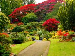 lush greenery pictures beautiful gardens wonderwordz