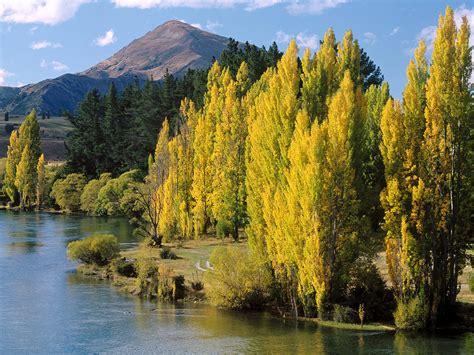 Imagenes Hermosas De Nueva Zelanda | nueva zelanda naturaleza y paisajes de nueva zelanda en