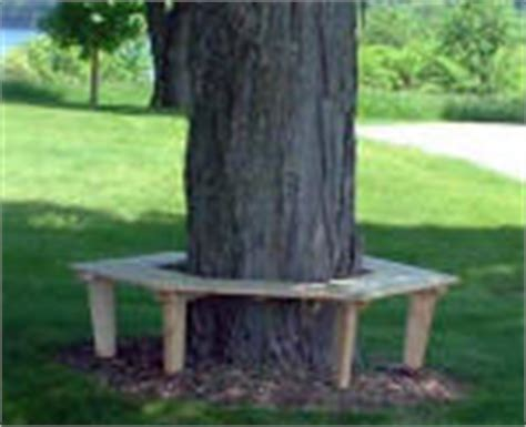 bench tree group tree bench