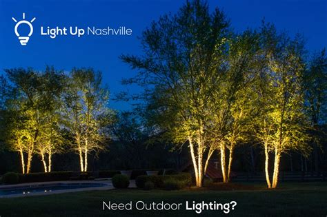 Light Up Outdoor Trees Up Lighting On Birch Trees Creates A Wonderful Effect We Install High Quality Outdoor Lighting