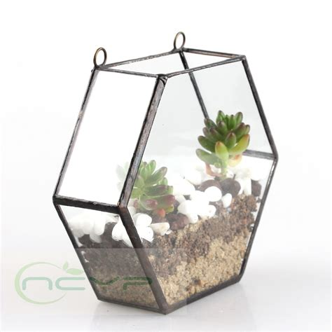 glass succulent planter popular glass plant pots buy cheap glass plant pots lots