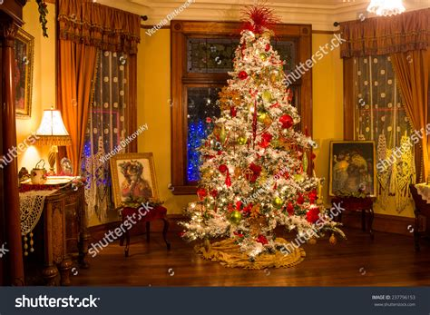 images of portlands xmas trees portland or december 13 2014 style tree in the stock