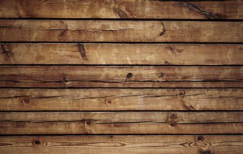 odd peculiar interesting  unusual facts  wood