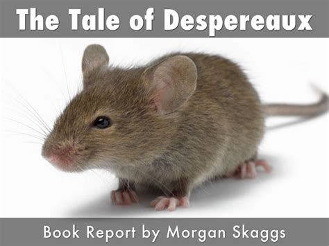 the tale of despereaux book report the tale of despereaux by mprice3