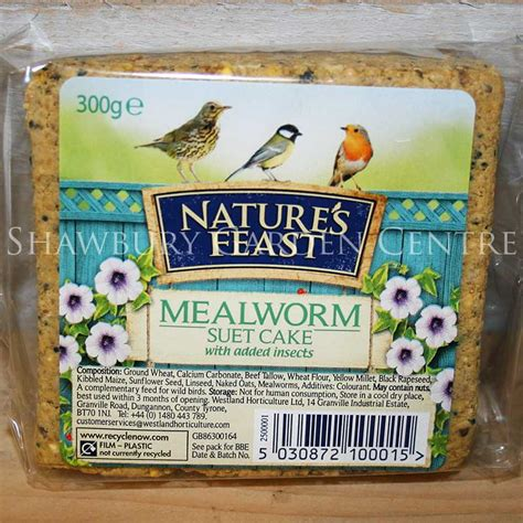nature s feast mealworm suet cake block bird food