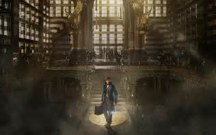 where to find wallpaper fantastic beasts and where to find them 2016 wallpapers