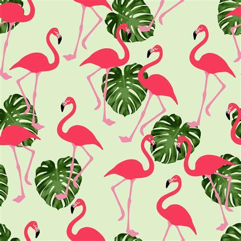 wallpaper direct flamingo flamingo wallpapers impremedia net