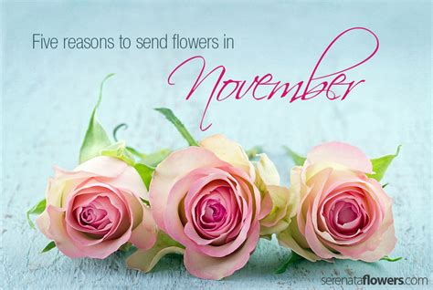 Reasons To Send Flowers by Five Reasons To Send Flowers In November