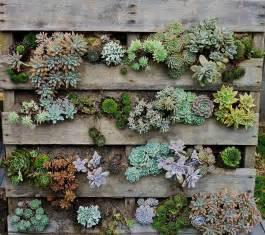pallet planter herb garden ideas gallery wallpaper
