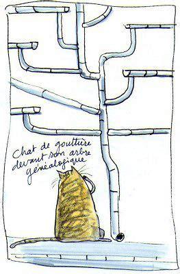 Картинки смешных беременных животных