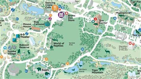 saving wildlife and wild places bronx zoo