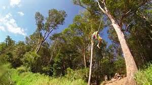 rope swing gold coast abc open stories made by you abc gold tweed coasts