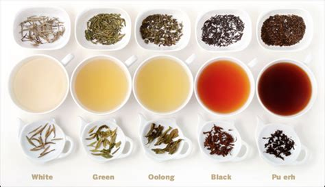 Teh White Tea powerful antioxidants 01 white tea doctor health