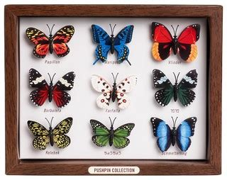 Butterfly Push Pins Eclectic Desk Accessories By Butterfly Desk Accessories