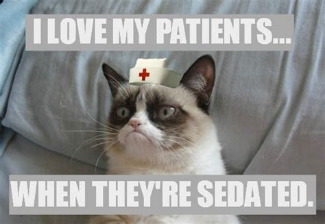 Happy Nurses Week Meme - happy nurses week grumpy cat meme grumpy cat rn pinterest