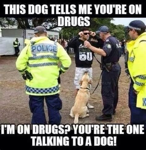 40 very funny cops meme pictures and photos