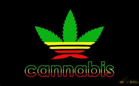 imagenes chidas para jovenes im 225 genes de marihuanas chidas para j 243 venes rebeldes