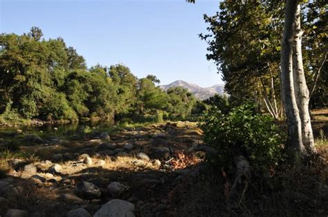 Three Rivers Cabins California by Living Area Picture Of Riverfront Cabins Kaweah General