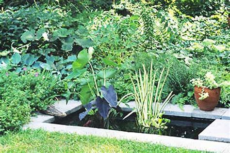 backyard pond ideas small 21 garden design ideas small ponds turning your backyard