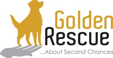 canadian golden retriever adoption service inc golden rescue golden rescue releases 2015 financial statements