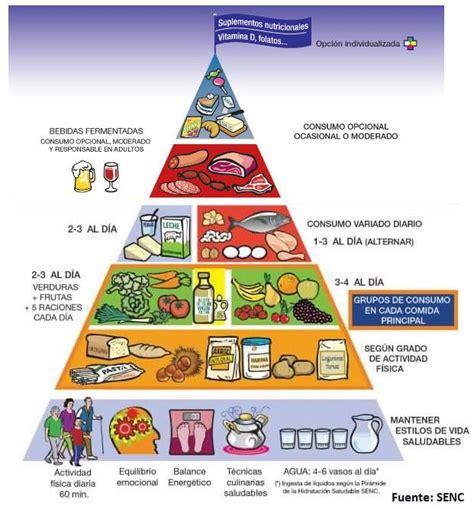 preguntas sobre guias alimentarias m 225 s de 25 ideas incre 237 bles sobre piramide nutricional en