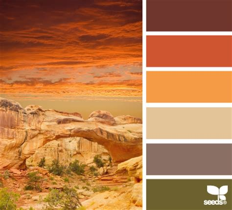 desert colors 10 color palettes and hex codes for the autumn