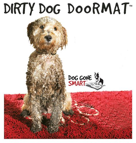 Best Doormat For Dogs by Doormat Bowhouse Simply The Best