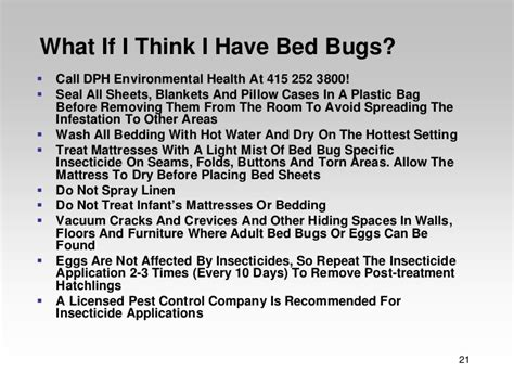 i think i have bed bugs bed bug ecology
