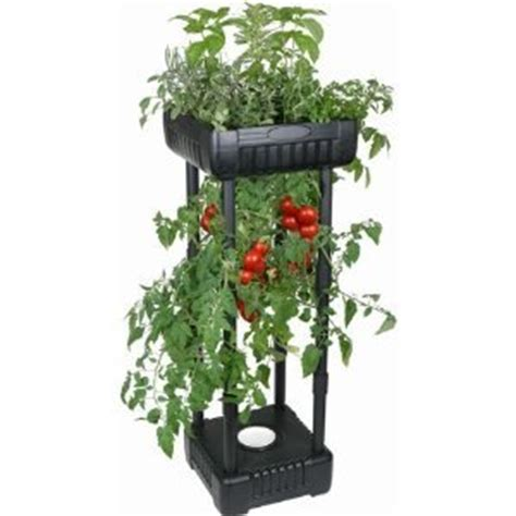 Inverted Planter by Compact Tomato Planter Patio