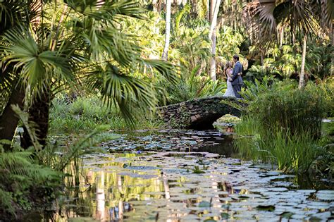 mckee botanical gardens erica and married orlando wedding photographer kristen weaver photography