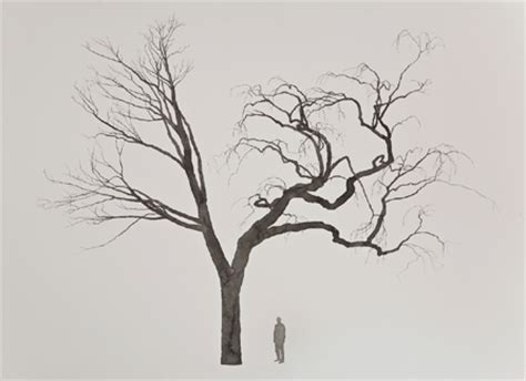 Tattoo Inspired Home Decor by Design Squish Blog Trees Roxy Paine Trees Art