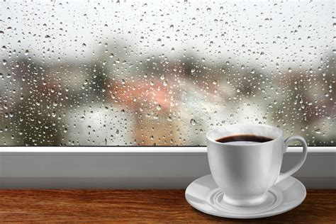 coffee cup  window  rainy day view stock image