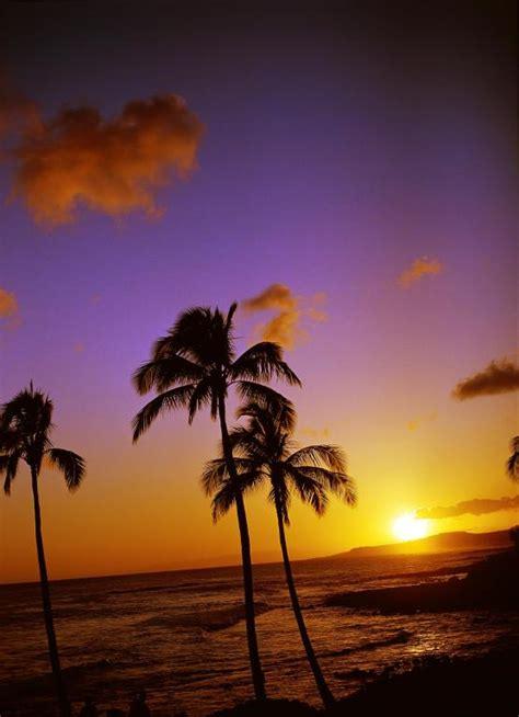 time  visit hawaii
