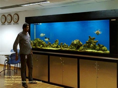 aquarium design in chennai 3 of 13 photos pictures view aquarium design india