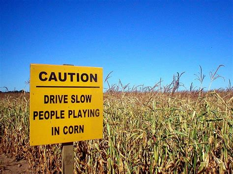 corn field funny road signs people playing