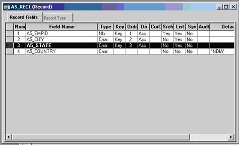 peoplesoft file layout definition table dynamic prompt in peoplesoft peoplesoft