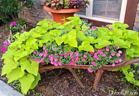 Unique Flower Planter Ideas by Unique Flower Planter Ideas For Flowers And Succulents