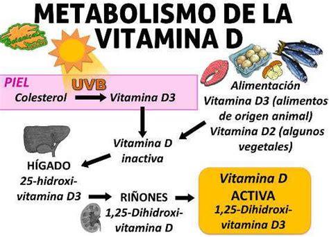 lade uva uvb lade uva e vitamina d radicales libres y antioxidantes