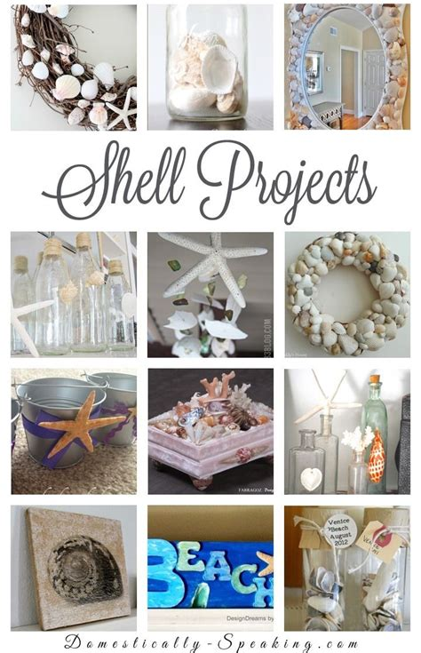 diy crafts with seashells 350 best shell crafts images on seashell crafts shells and crafts