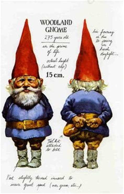 of gnomes books 1000 images about gnomes on gnome home the