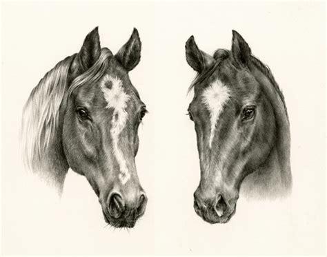 courtney brims  drawing arm illustration agency