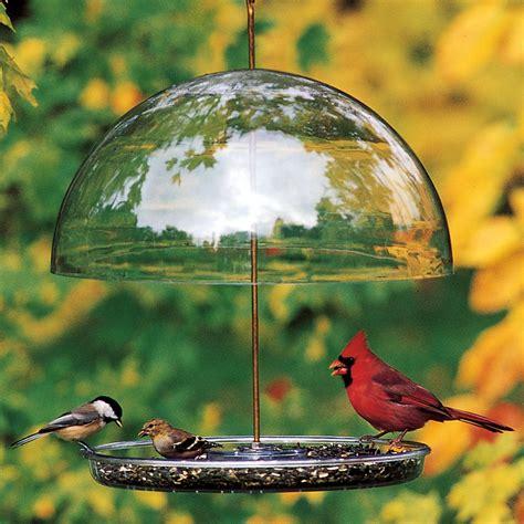 dorothy s cardinal bird feeder dcf droll yankees